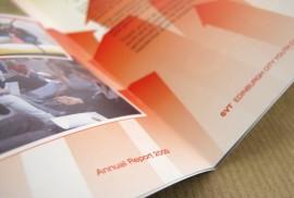 6VT - Annual Report 2009