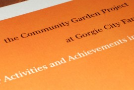 GCF - Community Garden Project Report